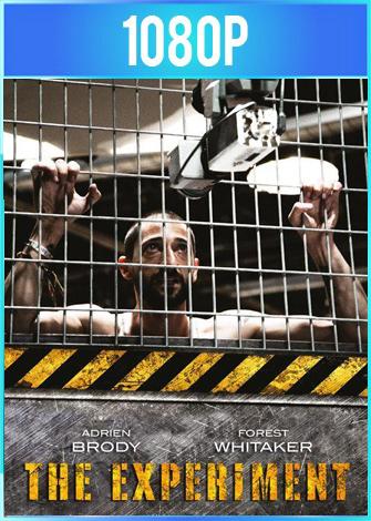 The Experiment (2010) BRRip HD 1080p Latino Dual