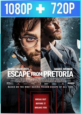 Fuga de Pretoria (2020) HD 1080p y 720p