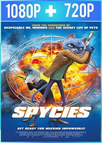 Spycies (2019) HD 1080p y 720p Latino Dual