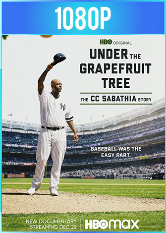 Under the Grapefruit Tree: The CC Sabathia Story (2020) Documental HD 1080p Latino Dual