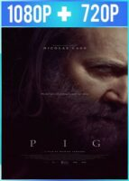 Pig (2021) HD 1080p y 720p