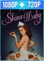 Shiva Baby (2020) HD 1080p y 720p