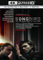 Songbird [Infectados] (2020) 4K UltraHD 2160p HDR Latino Dual