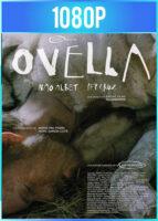 Ovella (2021) HD 1080p Castellano