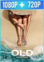 Viejos (2021) HD 1080p y 720p Latino Dual